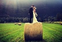 Country Love (wedding ideas)