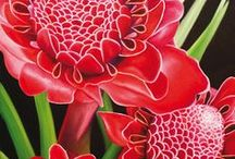 Flowers & Garden Stuff / by Denver Toth