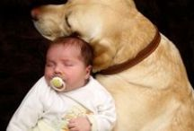 Babies & Pets / adorable pictures and videos of babies, children and their special animal friends