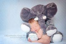 Baby Boy / by Holly Scogin
