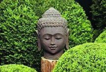 Zen / by Denver Toth