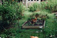 { home & garden }