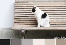 color: palettes / color inspiration for designers, brides, photographers...
