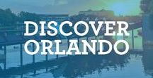 Discover Orlando / Discover all of the amazing adventures Orlando has to offer outside of the theme parks!