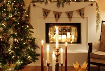 Holidays/Events / by Meghan Dillon
