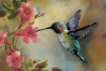 Art ~ Birds & Fish & Frogs / by June Flory