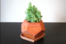 Pots & Planters / by Laura Pate