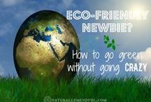 Green Living / Eco friendly living. / by Maria Wasley