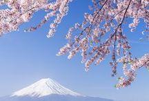 :: Welcome to Japan :: / Japan / by Koichiro Fujino