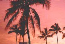 ✈ Floride (USA)