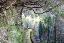 Madeira, Porto Santo / Madeira Island, Porto Santo Island, Traveling, Walking.