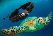 """SCHILDKRÖTEN - TURTLE KOLLEKTION / Tolle Bilder und handverlesener Schmuck rund um Schildkröten und """"Meer"""""""