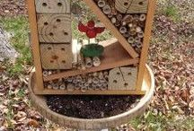 The Birds & The Bees / Ways to help increase the bee populations- for everyone who eats food.