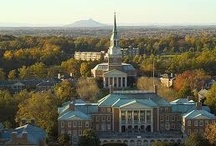 Wake Forest University / by ΑΔΠ WFU