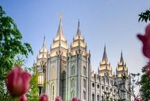 Because I'm Mormon
