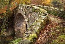 Bridges / by George Harrington