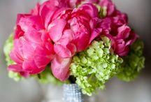 Bouquets / by Susan Gordon