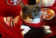 FOOTBALL - YESSSSSS!!! / Yup...I'm a FAN San Francisco 49ers. Toronto Argonauts (Hometown Team), Hamiton Tiger Cats (Home Team)