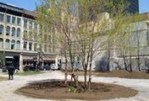les parcs éphémères de Montréal / les différentes étapes de construction du parc éphémère et les éditions précédentes