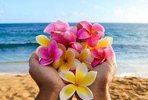 Hawaiian Lei and Flowers