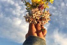kwiaty ♡