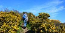 Wandelvakanties/Hiking Holidays / Deel hier je mooiste foto's van wandelvakanties met ons. Stuur een bericht om toegevoegd te worden! Share your best hinking holiday adventures with us.