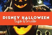 Disney Halloween / What to expect on your Disney Vacation during Halloween time! As well some ways to add some Disney to your Halloween decoration back home.