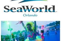 Other Orlando Attractions
