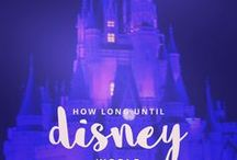 Disney Pictures / Photographs from around Walt Disney World.