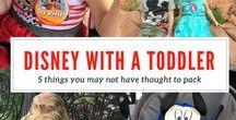 Disney World Tips and Ideas