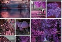 MAGIE barev a tvarů-desing / všech tonů barev,valér-tvarů-látek,oděvú,předmětů,lidí