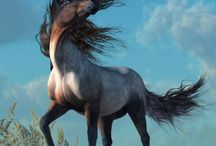 Horses / Stunning photos and artwork of horses.