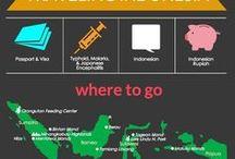 Indonesia - Indonésie / Travel tips, vaccines, recommendations and medication for travel to Indonesia. | Vaccins, conseils, médicaments pour voyager en Indonésie - La Clinique Santé Voyage