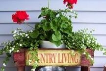 Country Living / This board shows a lot of things that you get to do while living on a farm.  It can keep you very busy but it is a lot of fun.  Take a look.