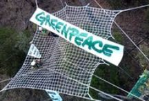 Take Action / Greenpeace activists taking direct action to ensure a green and peaceful future for generations to come. Take a look at peaceful protests around the planet. / by Greenpeace Australia Pacific