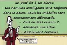 FLE : humour en français
