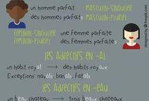 FLE : les adjectifs