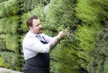 Urban farming / Inspirerende voorbeelden voor een groenere stad