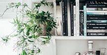 HOME INSPO / All the home and interior inspiration