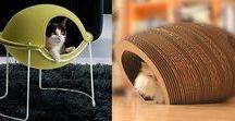 Casas para Gatos