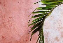 Tropical & Elegance /  tropical swimsuit one piece swimsuit tropical pattern tropical print tropical lover beach life beach day beach bum lovers resort life swimsuit one piece swimsuit bikini bathing suit floral swimsuit print swimwear elegant swimwear classic swimsuit high quality swimsuit fashion womens fashion clothing