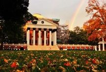 O is for One hellUVA school / go hoos / by Kate Martelino