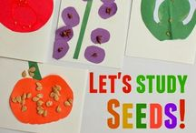 Plant theme: Early Childhood Activities / Early childhood activities