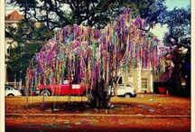 New Orleans WOW!!!! / by Barbara Sizemore