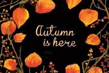 Autumn / Everything to get you excited about autumn