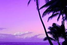 紫の世界 / 【カラー別インスピレーションの世界】 …━━… 紫(Purple) …━━… 特定の色をメインにしたDIYや空間作りは、一度その小さな世界を飛び出して、イロトリドリの世界に目を向けてみると、また違った面白さを感じることができます。  そんな色のインスピレーションを掻き立てる世界を集めました。  《おすすめPoint》 色の組み合わせ/メインを引き立てる色/メインの色が占める割合/同色の濃淡(色使い)