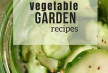 Vegetable Garden Recipes / A collection of recipes fresh from the vegetable garden! Fresh produce is the star of these homemade recipes. Make home cooked meals from scratch using garden fresh recipes!