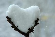 Love: Snow / by Rebekah Kik