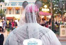 Disneyland Trip 2014 / by Maddybird Makeup
