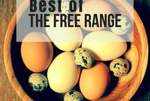 The Best of the Free Range Life / You can find all of the articles from The Free Range Life Right here! Your one stop for homesteading information- everything you want to know about vegetable gardening, raising goats, and homesteading skills.